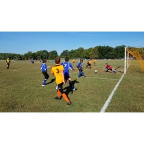 Dorchester County Youth Soccer 2020